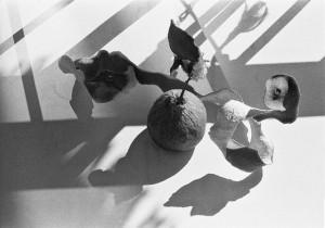 16-07-49_atelier_web-2